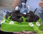 10 let NF Krtek a narozeninový dort - 10 let NF Krtek a narozeninový  dort